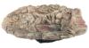 Acuami Terrarium Badeschale – Wassernapf zum Baden und Trinken für Reptilien und Amphibien – Terraristik-Zubehör – Deko in Stein-Optik (XL) - 1