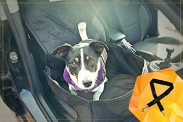 Bee more dog 2-in-1 Hund Autositzbezug als Hundekorb oder Schondecke für Vordersitz, abwaschbarer und rutschfester Sitzbezug mit Gurt für alle Autos - 7