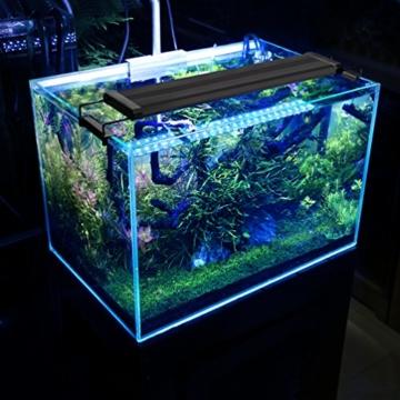 Amazing BELLALICHT Aquarium LED Beleuchtung, Aquariumbeleuchtung Lampe Weiß Blau  Licht 6W Mit Verstellbarer Halterung Für 30cm