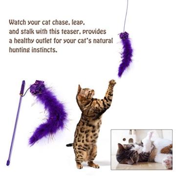 Legendog Katzenspielzeug Set, 17 Stück Katzen Spielzeug | Katzenangel Maus Bälle Katzenspielzeug | Spiele für Kitten - 4