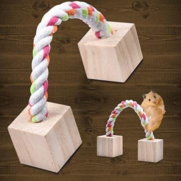 Leisuretime 5 Stücke Pet Spielzeug Set Kleine Haustiere Holz Kauen Spielzeug Kiefer Dumbells Einrad Glocke Roller Kauen Spielzeug Für Katze Kaninchen Hamster Ratte (5 pcs) - 3