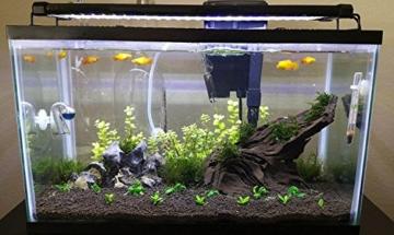 NICREW LED Aquarium Beleuchtung, Leuchten für Aquarien, Aquarium LED Lampe mit Mondlicht, LED Licht für Süßwasser Aquarien, 72-92 cm, 18 W, 920 LM - 7