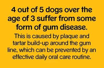 Pedigree Denta Stix Fresh Hundeleckerli für kleine Hunde, Kausnack gegen Zahnsteinbildung, Für gesunde Zähne und einen frischen Atem, 1er Pack (1 x 10 Pack) - 6
