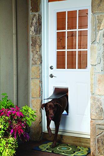 PetSafe Staywell Haustierklappe L, Aluminium Rahmen, 2 Verschlussoptionen, robust, 50,20 x 32,60 cm, große Hunde max. 45kg - 6