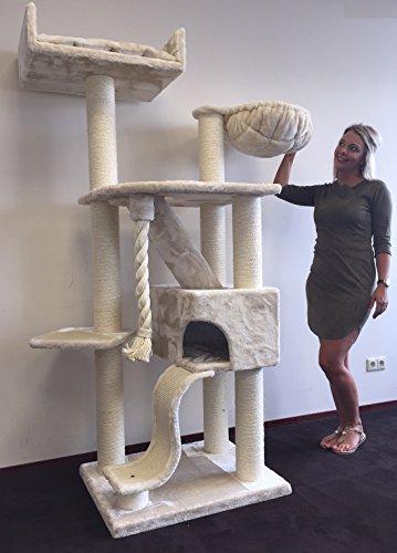 RHRQuality Kratzbaum Große Katze Kilimandjaro de Luxe Creme. Stabil 45KG!. Sisalstämme 12cmØ Katzenkratzbaum für Große Katzen. - 2