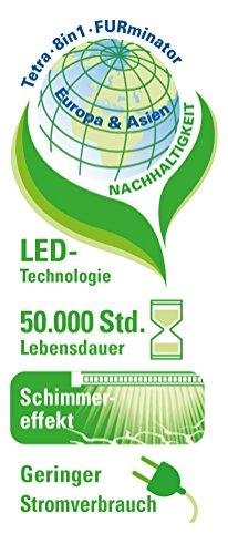 Tetra AquaArt Discovery Line LED Aquarium-Komplett-Set 60 Liter anthrazit (inklusive LED-Beleuchtung, Tag- und Nachtlichtschaltung, EasyCrystal Innenfilter und Aquarienheizer, ideal für Zierfische) - 7