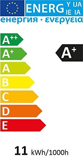 Tetra AquaArt Discovery Line LED Aquarium-Komplett-Set  60 Liter anthrazit (inklusive LED-Beleuchtung, Tag- und Nachtlichtschaltung, EasyCrystal Innenfilter und Aquarienheizer, ideal für Zierfische) - 9