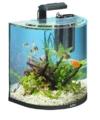 Tetra AquaArt Explorer Line Aquarium Komplett-Set 60 Liter anthrazit (gewölbte Frontscheibe, langlebige LED-Beleuchtung, ideal für die Haltung von tropischen Zierfischen) - 1