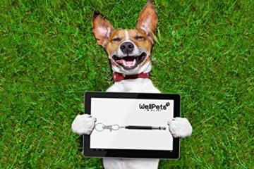 WellPets Profi-Hundepfeife 3 Stück | 7X Bonus inkl. 2 Ersatz-Pfeifen, 2 Umhängebänder, Edler Leckerlibeutel, Hunde-Klicker und Ebook Hundetraining | Ultraschall, Hochfrequenz, Verstellbar und Leise - 9