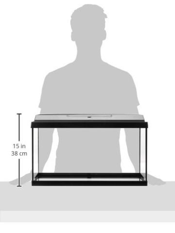 Dehner Aqua Aquarium Starterset 60, ca. 61 x 37 x 31 cm, inkl. Futter und Pflegeprodukten - 4