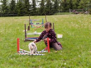 Kaninchen Tricks beibringen