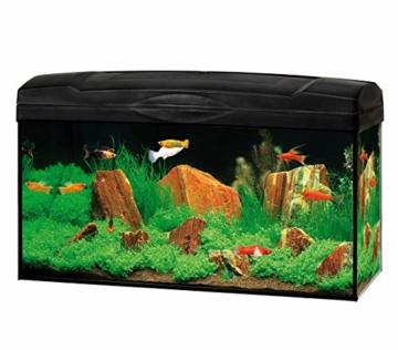 DehnerGute Wahl Aquarium Starterset Scout mit LED-Beleuchtung, ca. 60 x 30 x 30 cm, 54 l, Glas/Kunststoff, transparent/schwarz - 1