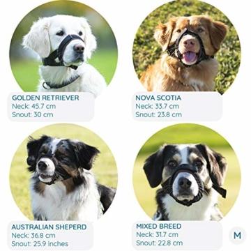 GoodBoy Maulkorb für Hunde – Verhindert sicher Bisse und ungewolltes Kauen – Neuer sicherer bequemer Sitz – Weiche Neopren Polsterung – Kein Wundscheuern mehr (M, Grau) - 2