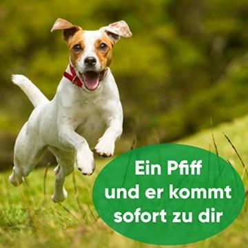 ENERO Hundepfeife - Extrem zuverlässiges Hundetraining & Erziehung - Hochfrequenz - weitreichende Lautstärke - Inkl. praktischem Umhängeband - 4