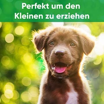 ENERO Hundepfeife - Extrem zuverlässiges Hundetraining & Erziehung - Hochfrequenz - weitreichende Lautstärke - Inkl. praktischem Umhängeband - 7