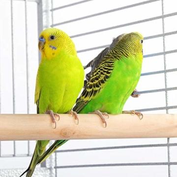Yaheetech Vogelvoliere Vogelkäfig Käfig für Wellensittich Papageien 65,5 x 65,5 x 156 cm,Weiss - 8