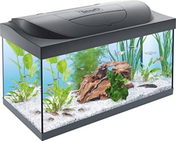 Tetra Regular Starter Line Aquarium-Komplettset mit LED-Beleuchtung stabiles 54 Liter Einsteigerbecken mit Technik, Regular Starterline, Futter und Pflegemitteln - 1
