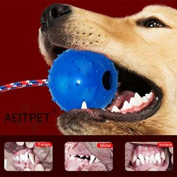 AEITPET Hunde Ball mit am Seil hundeball mit Schnur Naturkautschuk hundespielzeug Ball hundeball unzerstörbar Bälle Spielzeug am Seil für Hunde Kauspielzeug aus Naturgummi Hunde Spielzeug - 3