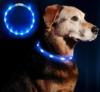 Anicoll LED Leuchthalsband Hunde Halsband - blau USB Wiederaufladbar - Längenverstellbarer Haustier Sicherheit Kragen für Hunde und Katzen- 3 Modus 12 Lichte - 1