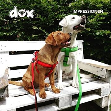 DDOXX Hundegeschirr Air Mesh, Step-In, verstellbar, gepolstert | viele Farben & Größen | für kleine, mittlere & große Hunde | Brust-Geschirr Hund Katze Welpe groß | Katzen-Geschirr klein | Grün, XS - 7