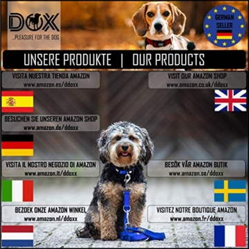 DDOXX Roll-Leine reflektierend, ausziehbar | viele Farben & Größen | für kleine & große Hunde | Gurt-Leine Hundeleine einziehbar Welpe Katze | Hundeleinen Zubehör Hund | S, 4 m, bis 10 kg, Blau - 8