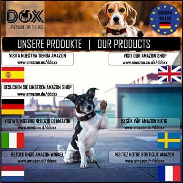 DDOXX Roll-Leine reflektierend, ausziehbar | viele Farben & Größen | für kleine & große Hunde | Gurt-Leine Hundeleine einziehbar Welpe Katze | Hundeleinen Zubehör Hund | S, 4 m, bis 10 kg, Blau - 9