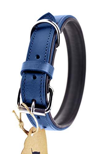 Schnüffelfreunde Lederhalsband Hund (XXL - 55-65cm, Blau) - 1