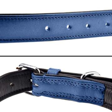 Schnüffelfreunde Lederhalsband Hund (XXL - 55-65cm, Blau) - 3