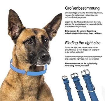 Schnüffelfreunde Lederhalsband Hund (XXL - 55-65cm, Blau) - 5