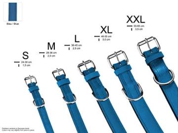 Schnüffelfreunde Lederhalsband Hund (XXL - 55-65cm, Blau) - 6