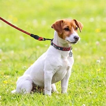 TagME Hundehalsband Leder für Kleine Hunde,Geflochtenes, Weich Gepolstert Hundehalsbänder mit Doppelten D-Ringen, Rot S - 6