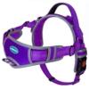 ThinkPet No Pull Hundegeschirr Atmungsaktives Sportgeschirr - Fluchtsichere, reflektierende, gepolsterte Hundesicherheitsweste mit rückseitigen/vorderen Griffklammern, leicht für das Lauftraining - 1