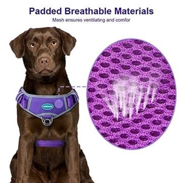 ThinkPet No Pull Hundegeschirr Atmungsaktives Sportgeschirr - Fluchtsichere, reflektierende, gepolsterte Hundesicherheitsweste mit rückseitigen/vorderen Griffklammern, leicht für das Lauftraining - 3