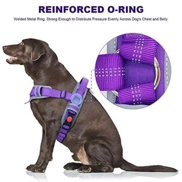 ThinkPet No Pull Hundegeschirr Atmungsaktives Sportgeschirr - Fluchtsichere, reflektierende, gepolsterte Hundesicherheitsweste mit rückseitigen/vorderen Griffklammern, leicht für das Lauftraining - 4