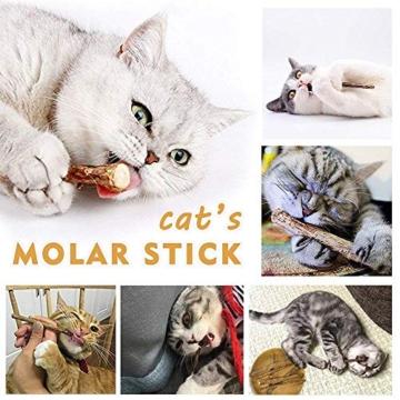 AILUKI 31 Stück Katzenspielzeug Set mit Grün Katzentunnel Jingle Bell Katzen Spielzeug Variety Pack für Kitty Grün - 6