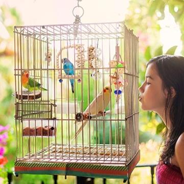 BYZESTY Vogelspielzeug, 8er Set Vögel Holzleiter Spielzeug mit Landeplatz Vogelkäfig Zubehör für Wellensittich Papageien Graupapageien Nymphensittiche Finken Sittiche Kakadus Aras - 7