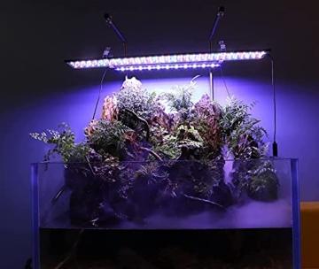 hygger Aquarienbeleuchtung, Aquarium LED Beleuchtung, 24/7 Modus für Sonnenaufgang-Tageslicht-Mondlicht, einstellbare Zeitschaltung einstellbare Helligkeit, mit ausziehbarer Halterung, 7 Farben - 7