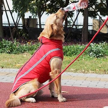 Idepet Wasserdichter Hundemantel für den Winter, Warme Jacke, Outdoor-Sport, wasserdichte Hundekleidung, Weste für kleine, mittelgroße und große Hunde mit Loch für Geschirr - 2