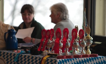 Internationale Hundeausstellung 2010