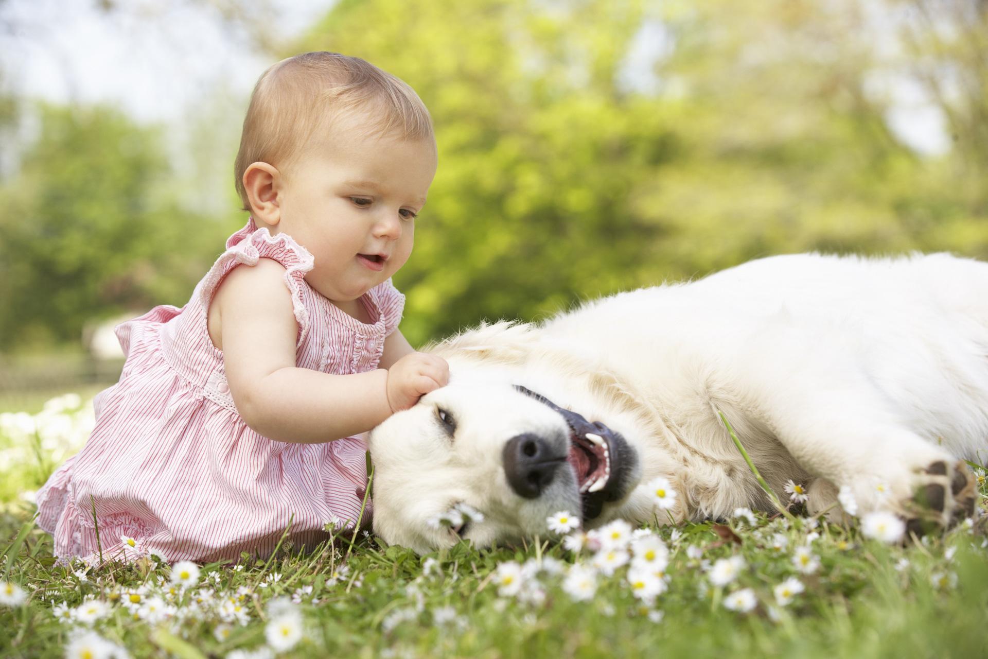 Baby mit Familienhund
