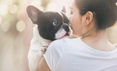 Hundenamen: So finden Sie den richtigen!