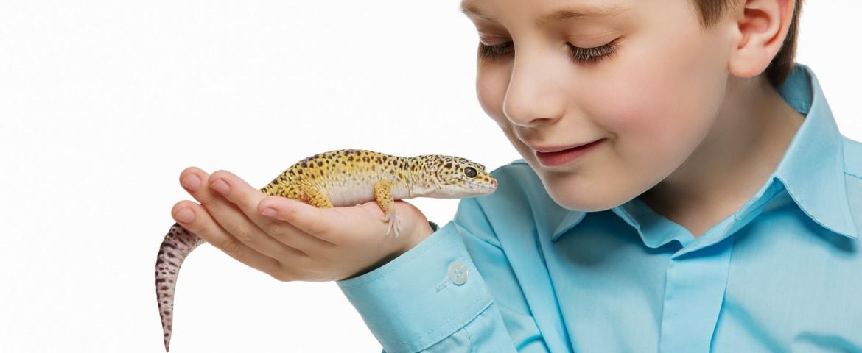 Reptil und Kind