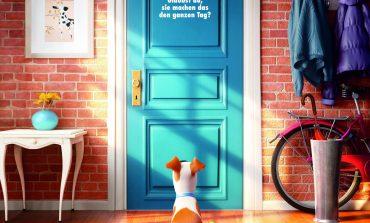 Haustiere erobern die Kinoleinwand!