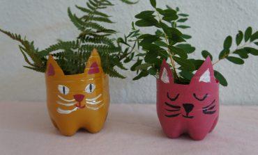 Für Selbermacher: Niedliche Katzen-Blumentöpfe basteln!