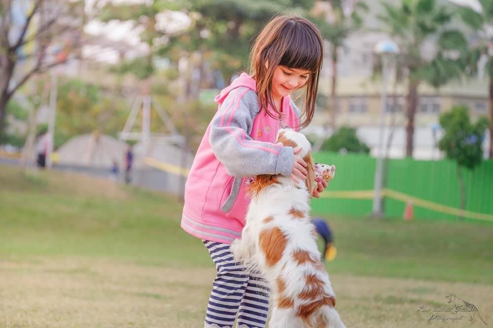 Wie verhalten sich Kinder bei Hunden