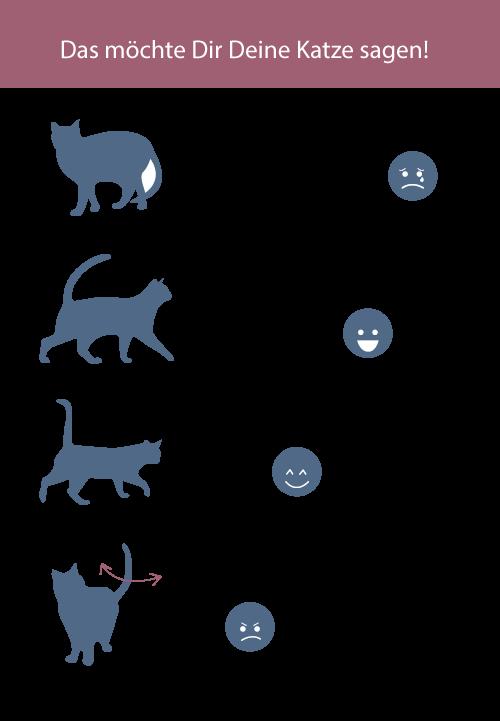 Die Katze kommuniziert mit ihrem Schwanz.