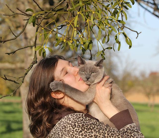 Um dir zu zeigen, wie lieb sie dich hat, reibt deine Katze ihren Kopf an dich.